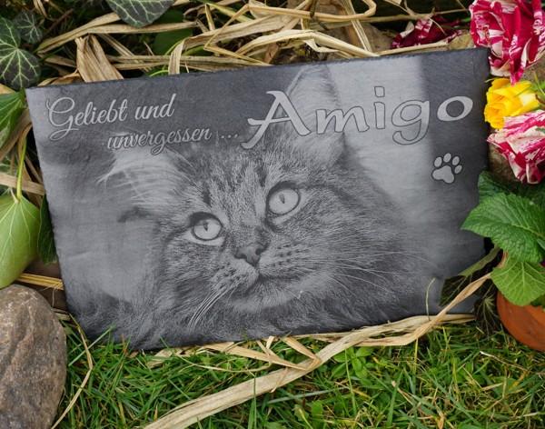 Grabstein Für Tiere