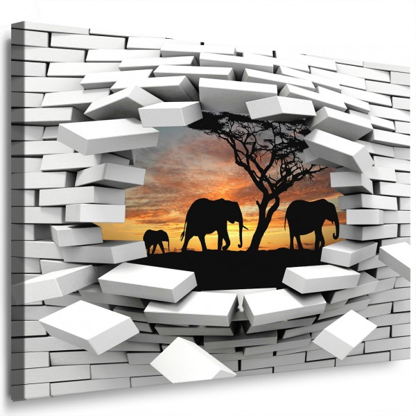 leinwandbild loch in der wand elefanten afrika wandillusion 3d bild wandbild 32 ebay. Black Bedroom Furniture Sets. Home Design Ideas